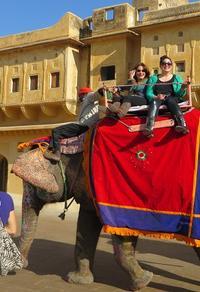 8-Day Private Golden Triangle Tour with a Ranthambore Wildlife Safari From Delhi