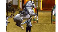 The Dancing Andalusian Horse Show