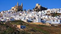 White Villages: Private Guided Day Trip from Seville