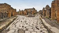 Pompeii Half Day - Group Excursion