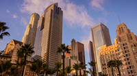 6-Hour Los Angeles City Tour