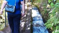 Levada do Rabacal 25 Fountains Walk and Jeep Tour