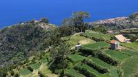 Madeira Highlights: Guided 4-Hour Tour from Funchal