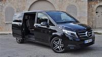 Private tour of Paris in Minivan