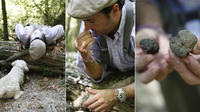 Orvieto: Half-Day Truffle Hunting Experience
