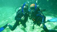 Discover Scuba in Cenote and Ocean Dive