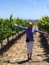 Napa Valley Wineries Tour