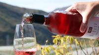 Full-Day Premium Queenstown Wine Tour