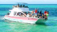 Punta Cana Catamaran Party Cruise
