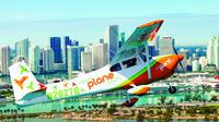 Miami Skyline Airplane Tour