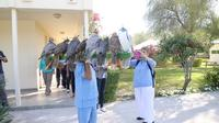 Abu Dhabi Falcon Hospital: 2-Hour Tour