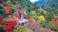 Cruising and Ropeway and Beautiful Nightview from Rokko Garden Terrace in Hyogo