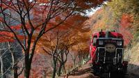 Day Trip to the Sagano Romantic Train and the Hozugawa River Boat Ride