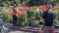 San Francisco Parks and Beaches Bike Tour