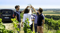 Small-Group Half-Day Tour to the Champagne Region from Reims with Champagne Tastings