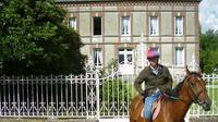 Private Tour: Normandy Thoroughbred Horse Studs With Optional Horseback Riding From Caen