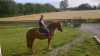 Private Tour: Normandy Thoroughbred Horse Studs with Optional Horseback Riding from Rouen