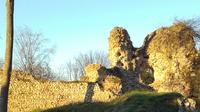 The Castle of Montfort sur Risle 1000 years old*