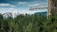 Excursión privada al puente colgante de Capilano y a la montaña Grouse