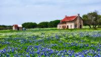 Texas Hill Country and LBJ Tour From San Antonio