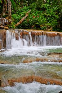 Dunn's River Falls Private Tour From Falmouth