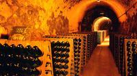 Breisach upon Rhine Sightseeing and Wine Tasting Tour
