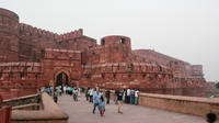 Day Trip to Taj Mahal and Mehtab Bagh and Agra Fort from Delhi