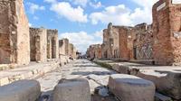 Pompeii, Mt Vesuvius and Herculaneum from Sorrento