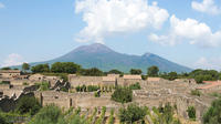 Pompeii Vesuvius Winery Lunch All-inclusive