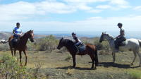 Volcanic Horse Riding Tour in Gran Canaria