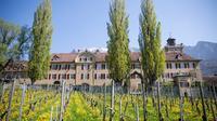 3 Hour Unique Wine Tour - Half Day in Swiss Alps