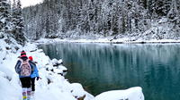 Garibaldi Lake Snowshoeing and Photography Tour