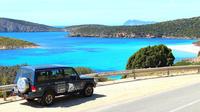 Full-Day Tour of Sardinia
