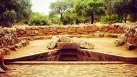 Well Temple and Cabras Museum