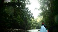 Taman Negara Rainforest Day Tour