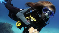 5 Day Dive Pack for Certified Divers