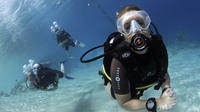 Day Of Scuba Diving By Boat For Certified Divers