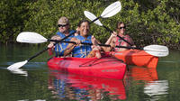 Key West Backcountry and Wildlife Refuge Kayak and Snorkel Tour