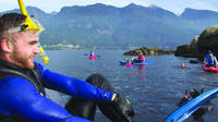 Vancouver Snorkel and Kayak Adventure: Snorkel with Seals