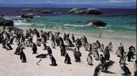 15-Day Picturesque South Africa Journey from Cape Town