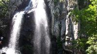One-Day Tour of Vitosha Mountain