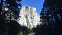 Yosemite and Glacier Point Tour from San Francisco