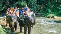 Whitewater Rafting with Elephant Trekking from Phuket