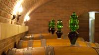 Private Full Day Amarone wine tasting and Garda lake visit
