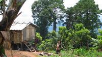 Doi Suthep National Park Beginner Downhill Bike Ride from Chiang Mai