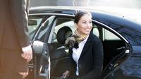 Low Cost Private Transfer From Karlovy Vary International Airport to Karlovy Vary City - One Way