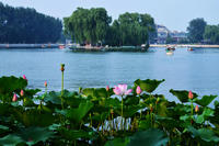 Private Half-Day Beijing Tour: Forbidden City and Houhai Lake Bike Tour