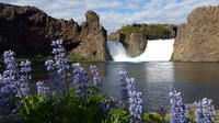 Iceland Highlands Including Landmannalaugar and Hekla - Private Day-Tour by Jeep