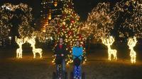 San Antonio Holiday Lights Segway Tour