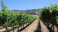 Private 6 Hour Napa Valley Wine Tour